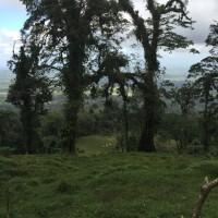 Hike from Cerro Chato